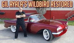 Gil Ayala wild bird