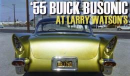 larry watson busonic