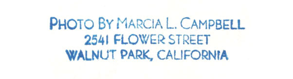 CCC-marcia-campbell-stamped